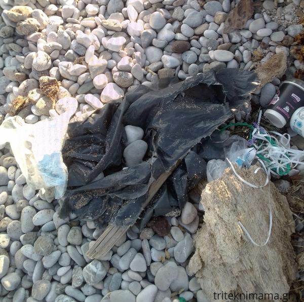 όχι σκουπίδια όχι πλαστικά σε θάλασσες και ακτές